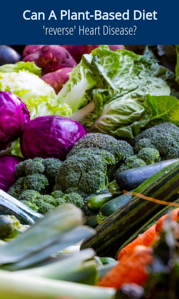 Can A Plant-Based Diet